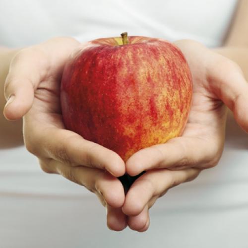 nutricion dietetica farmaestetic almeria